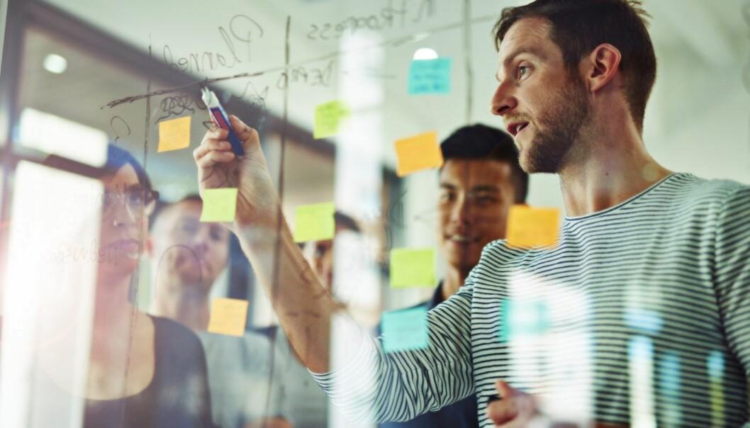 Å velge riktig og smalt nok kan være avgjørende for å bygge et selskap. Foto: iStock