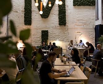 Kraftig vekst i antall coworking-konsepter i Oslo: Men bare halvparten er fylt opp