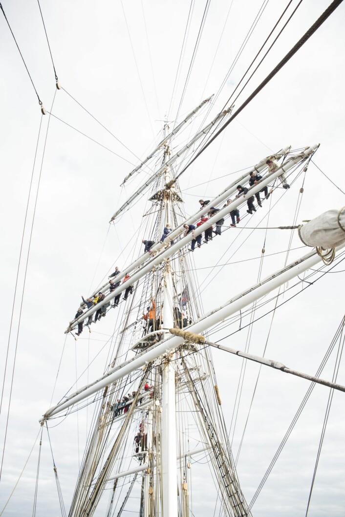 Ombord på Christian Radichkan gjestene klatre i mastene på fullriggeren. Her et foto tatt på xVoyage fra Oslo til København, da vinden ikke var så påtrengende som på veien tilbake. Foto: Per-Ivar Nikolaisen