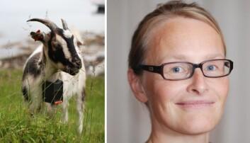 Hun skal ta norsk beitetech ut i verden: