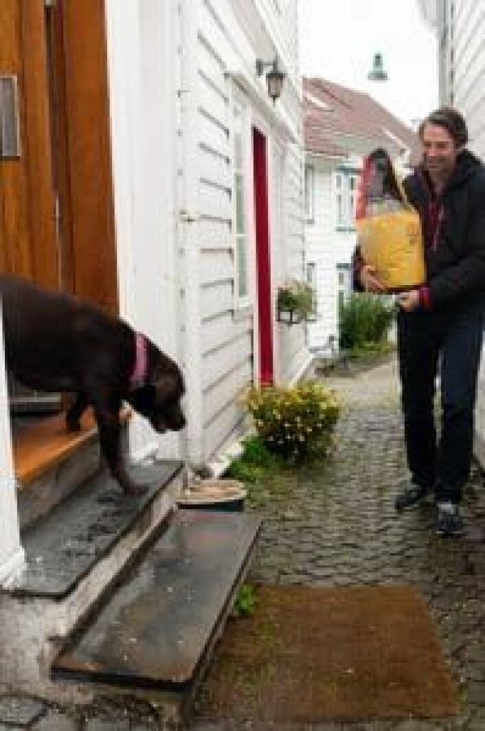 Gründer Trond Saure leverer favorittfôret til labradoren Leia.