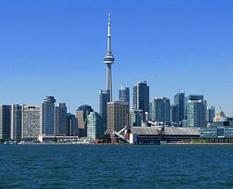 Norske startups, reis til Toronto, ikke Silicon Valley. *40 prosent billigere. *Grunderskolen tilbyr Toronto som destinasjon. *Byen fylles opp av amerikanske investorer på jakt etter investeringsobjekter.