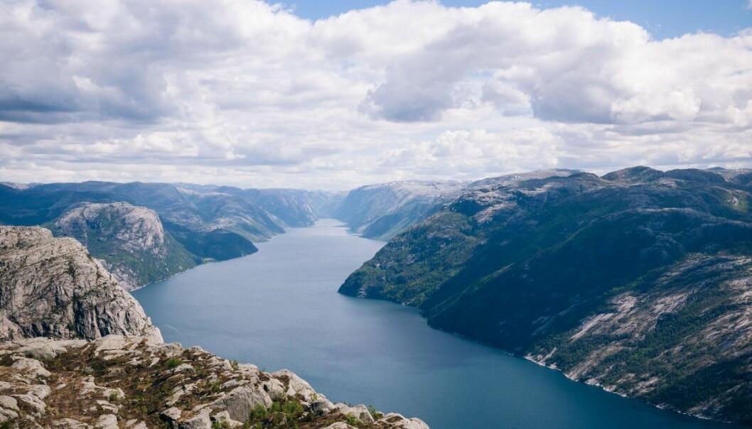 Anders Brandt har i alle år hevdet at Norge er en nasjon av risikoaverse siden alle med et snev av risikovillighet pakket kofferten og utvandret til Amerika på 1800-tallet.  Foto: Jeff Sheldon.