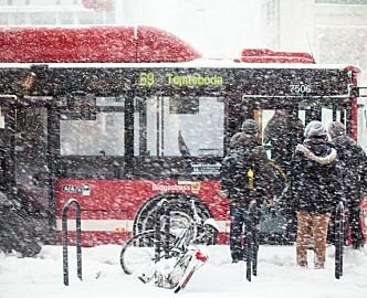 Ukens Norden: Alt du visste eller ikke visste om svenskers nettbruk. Og hva skjer i Stockholm når det snør en halvmeter?