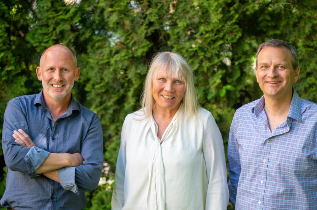 Johan Gjesdahl, Bente Loe og Arne Tonning i Alliance gjør et rekrutteringsvarp i Sverige.