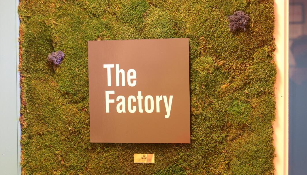 TheFactory har siden oppstarten i 2016, 46 selskaper. Nå trapper de opp