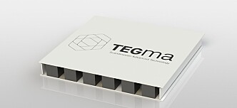 TEGma - Project Engineering Manager